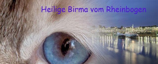 Heilig Birma vom Rheinbogen Kopie